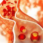 Aký význam má cholesterol pre naše telo?