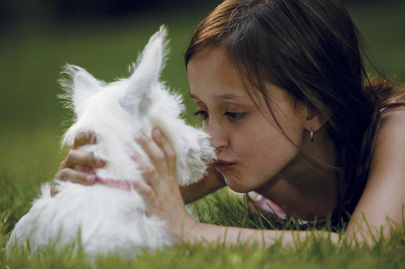 Dievcatko a pes
