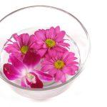 Liečivá sila kvetov a rastlín