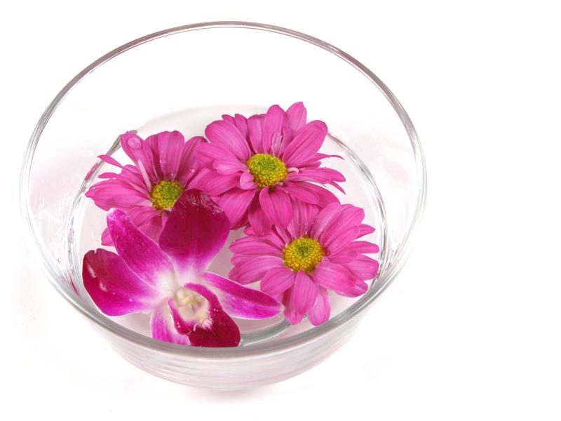 sila kvetov