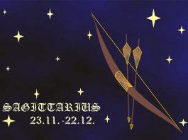 Strelec (23. november – 21. december)