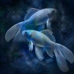 Manželstvá Rýb