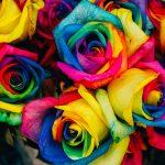 Kúzelné rady babky Ježibabky o farbách