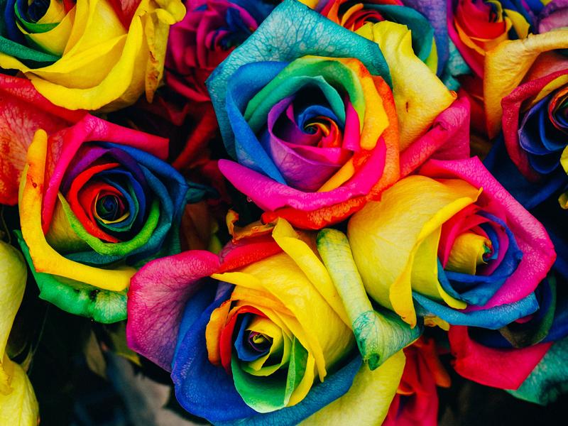 o farbách