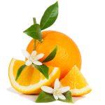 Pomaranče – oranžový zázrak