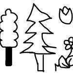 Kvety-a-stromy