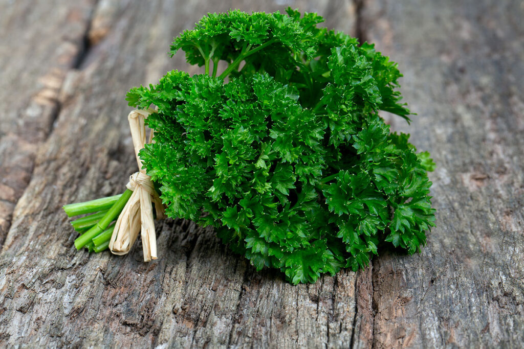 bylinky pre zdravie