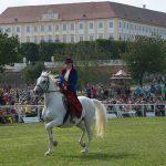 Slávnosť koní na zámku Schloss Hof