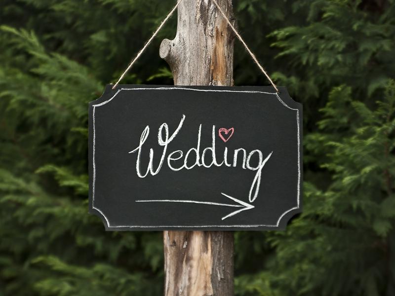 Vydávam sa