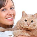 Mačacia terapia