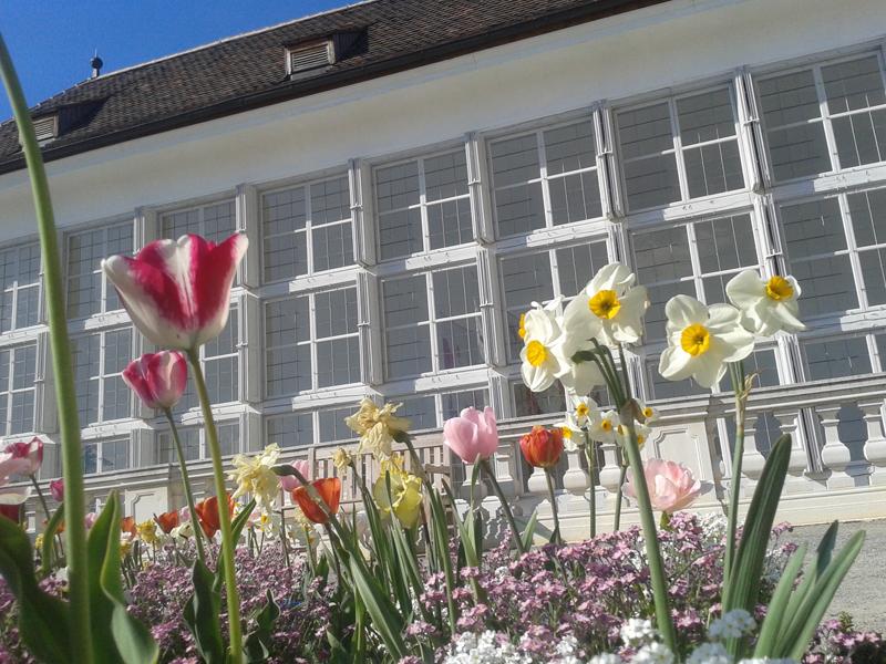 Orangerie Schloss Hof (c) Schloss Hof Hromjakova