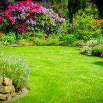Jarné záväzky v záhrade: Čo všetko by sme mali stihnúť?
