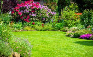 záväzky v záhrade