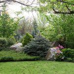 Päť najčastejších chýb pri plánovaní vysnívanej záhrady