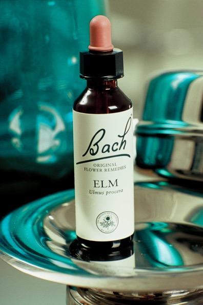 Bachove kvety