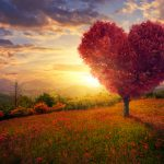 Life Koučing: Lásku nemožno minúť
