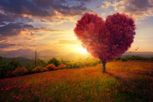 Lásku nemožno minúť