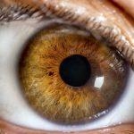 Pohľad do vašich očí prezradí všeličo….