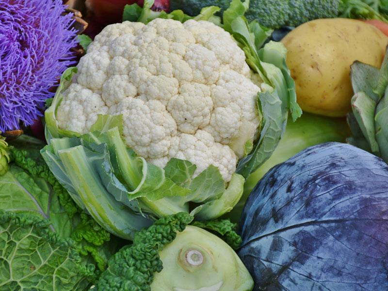 800_cauliflower-1644626_1920