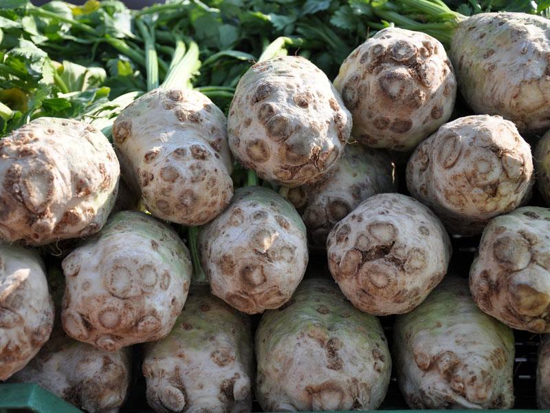 800_vegetables-699998_1920