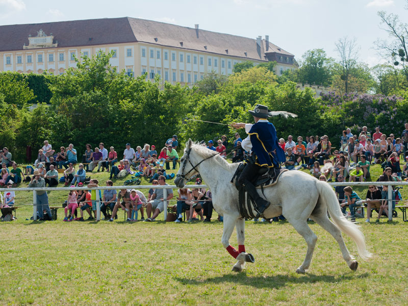 800_Musketierspiele-Schloss-Hof-(c)-Gerfried-Tamerler_Schloss-Hof-(11)