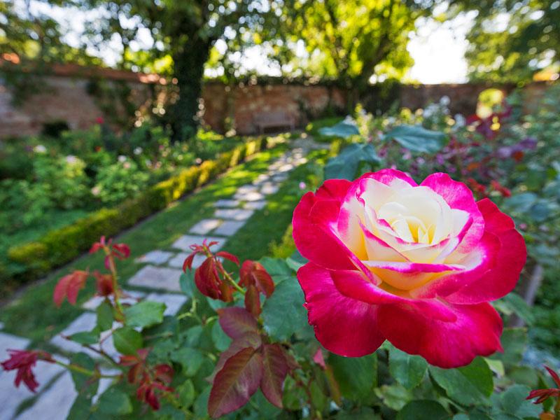 800_Schloss-Hof(c)SKB_Foto-Lois-Lammerhuber-(2)