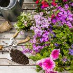 Mesiac záhradníkom – máj