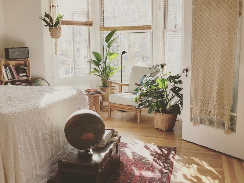 Rastlinky do spálne