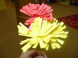Strapaté kvetinky