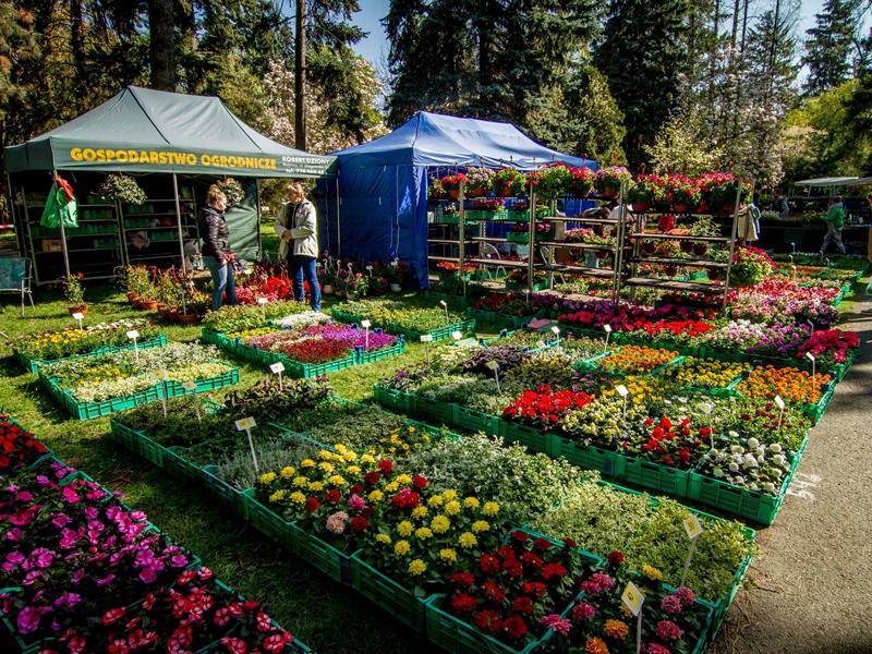 Jarná Flora Olomouc