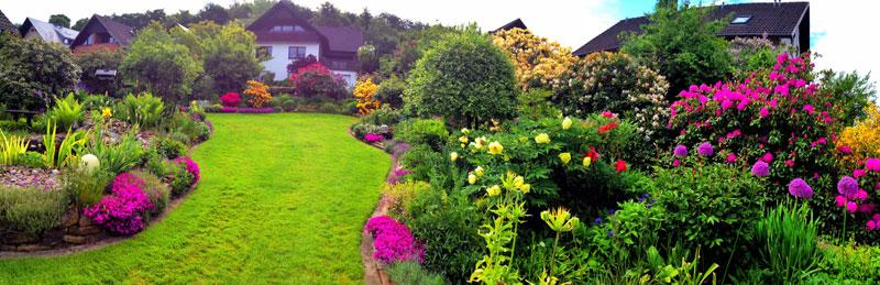 Máj v záhrade