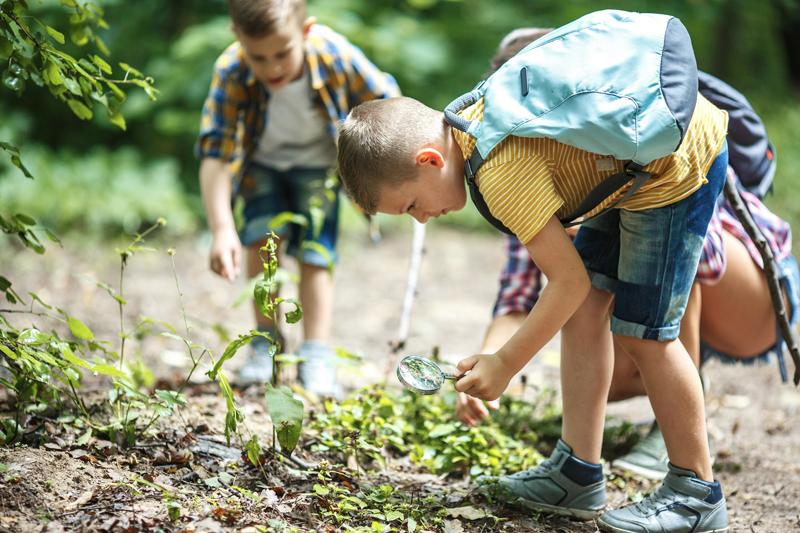 do školy v prírode