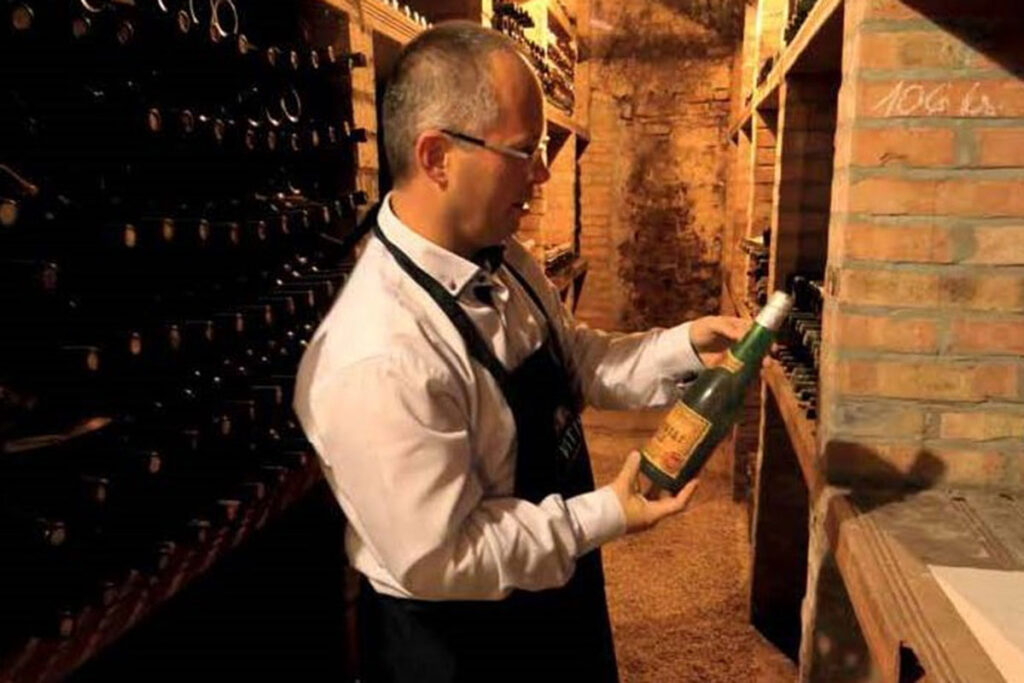 archívne vína Vitis